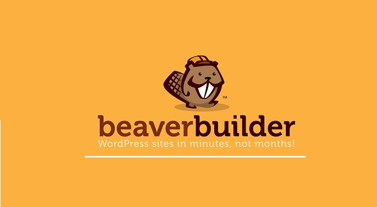 Beaver Builder Pro v2.4.0.6 Plugin Free Download [2020]