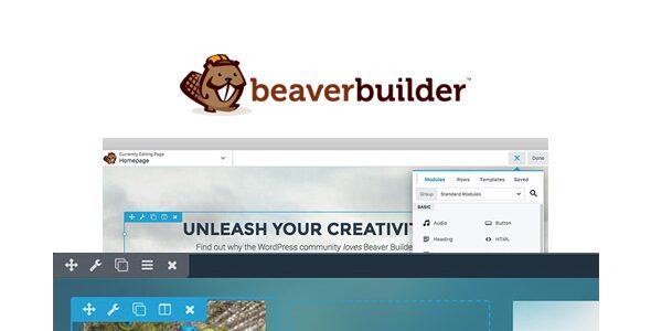 Beaver Builder Pro v2.4.2.1 Download