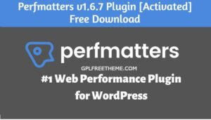 Perfmatters v1.6.7 Plugin Free Download [Activated]