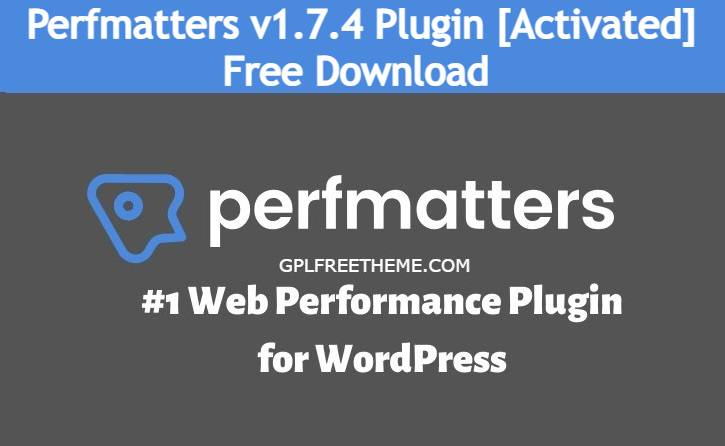 Perfmatters v1.7.4 Plugin Free Download [Activated]